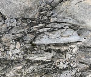 15 - Casey, hike (45) - smaller